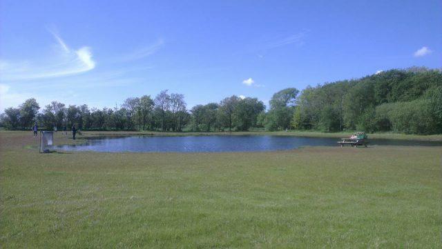 Fishing lakes at Borris