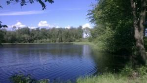 Fiskesøerne ved Borris